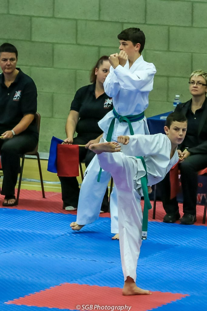 Blog 6.11.15 Nick Turner Taekwondo1